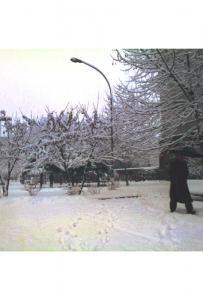 Tra la corte del boia e quello che era il giardino di Villa Casati 1986