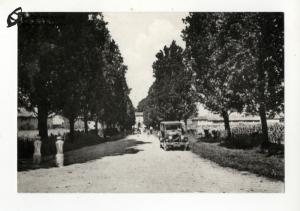 Villa Besozzi Casati sul fondo del viale alberato di via Visconti (anni '30)